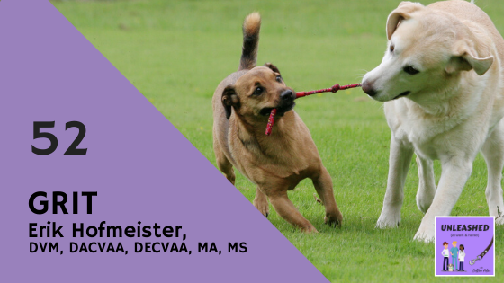 Erik Hofmeister, DVM, DACVAA, DECVAA, MA, MS, talked with Colleen Pelar about grit and how consistent effort helps pet professionals get better results than natural talent. Eager to develop your own grit? You'll discover some simple strategies in this episode. www.colleenpelar.com/52